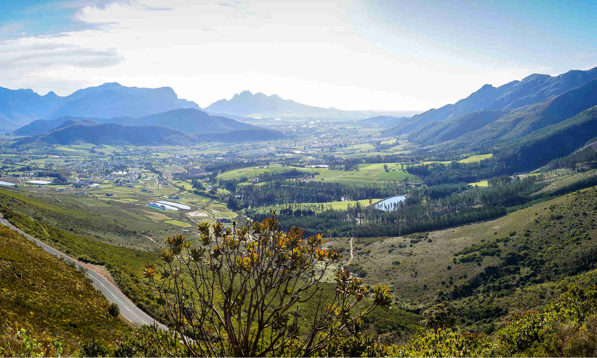 franschhoek valley vineyards
